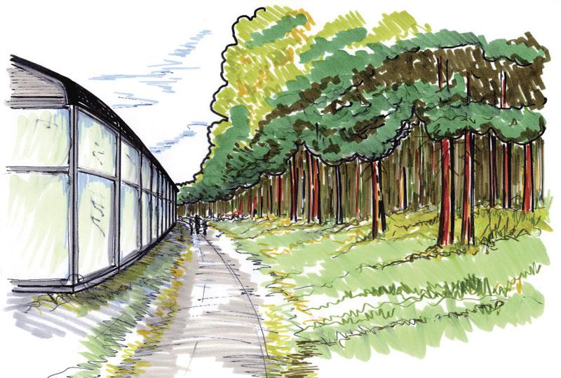 ботанического сада